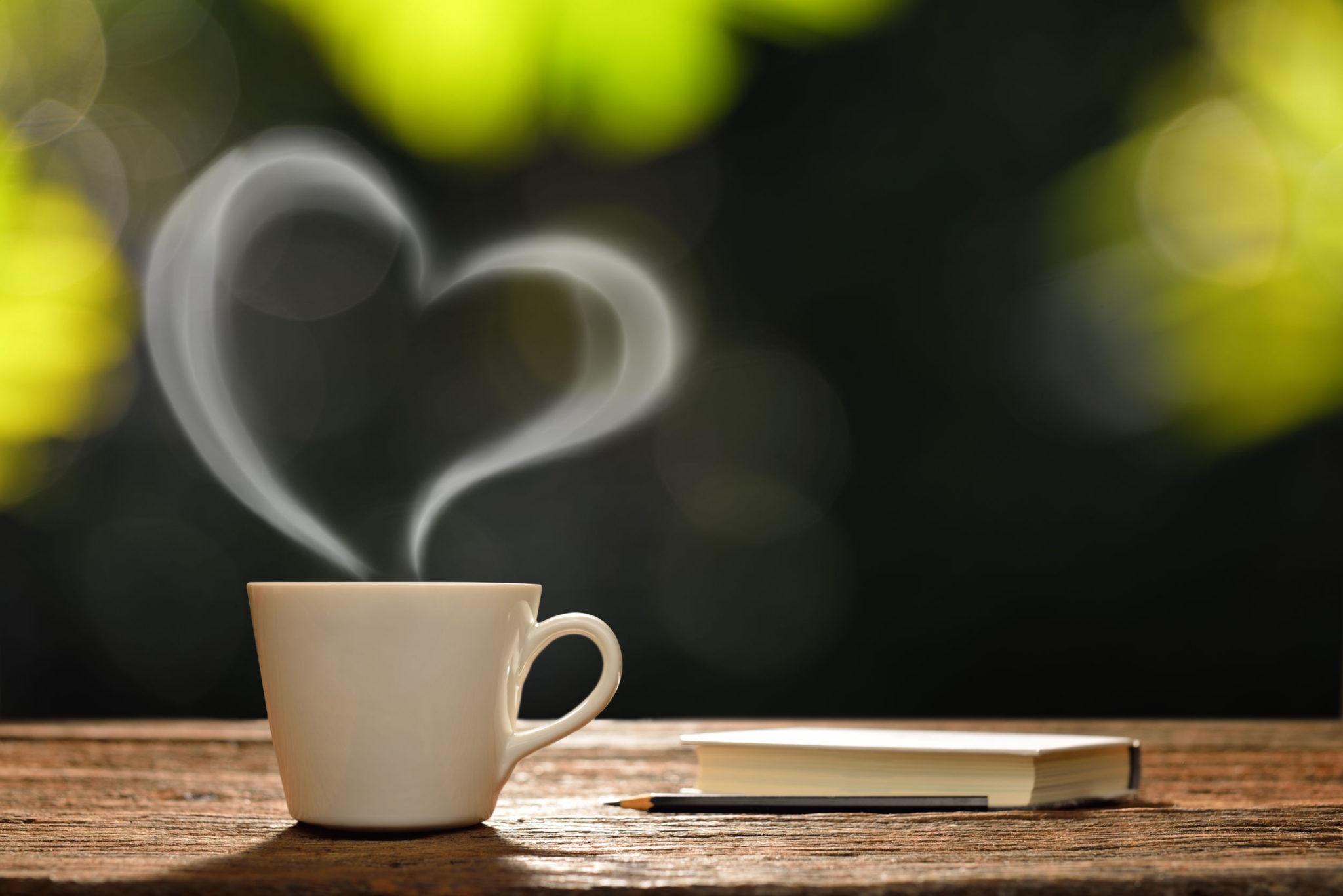 café lecture Champs-Plaisants